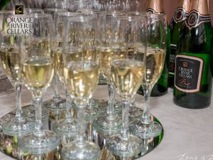 What to Do & See   Orange River Cellars Wine Tasting Upington Activities